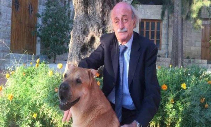 """كلب جنبلاط """"حارس العشيرة الأمين"""" يشعل سجالاً مع أرسلان ووهّاب ـ (تغريدات)"""