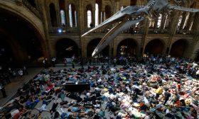 نشطاء البيئة المعتقلين في العاصمة البريطانية تخطى الألف