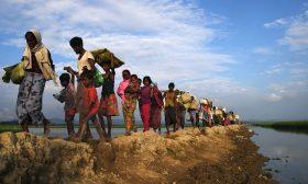 تقرير دولي: العنف الجنسي ضد الروهينجا في ميانمار يظهر نية إبادة جماعية