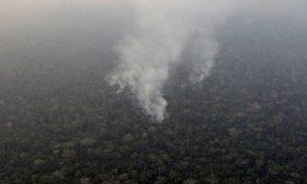 حرائق الأمازون إلى التدويل والرئيس البرازيلي يتهم منظمات غير حكومية