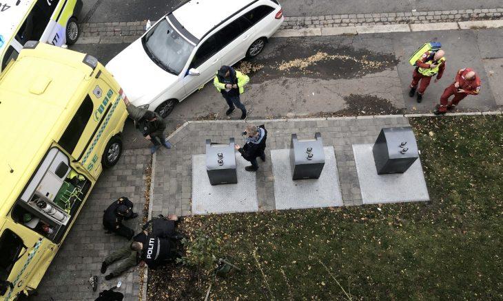 الشرطة النرويجية تلقي القبض على المرأة المشتبه في صلتها بحادث الدهس في أوسلو ـ (صور وفيديوهات)