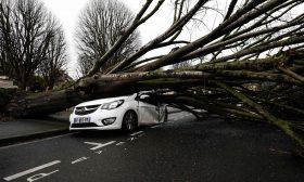 """مشاهد خلفتها العاصفة """"دينيس"""" في فرنسا وبريطانيا ـ (صور)"""