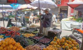 لجنة الزراعة في البرلمان العراقي: الدولة غير قادرة على وقف التهريب والمنتج المحلي يباع بأبخس الأثمان