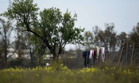 مأساة 7 آلاف مغربية منسية في هويلفا في انتظار العودة إلى الوطن