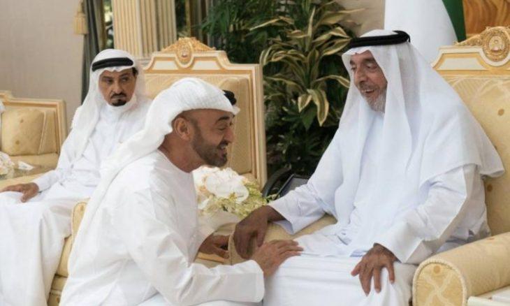 تقرير مثير عن محمد ومنصور بن زايد وكيف سيطرا على ثروة أخيهما رئيس الإمارات المريض