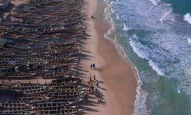 """حزب """"فوكس """"اليميني ينشر تغريدات مضللة حول المغرب و""""قوارب الهجرة""""- (تغريدات)"""