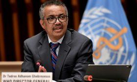 مدير منظمة الصحة العالمية يبدي تفاؤله بعد أنباء عن أحدث لقاح لكورونا