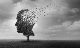 السكن في الهامش وطلاء الذاكرة