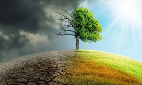 النشاطات الاقتصادية للبشر تتحمل مسؤولية الجزء الأكبر من ارتفاع حرارة الكوكب الأرض