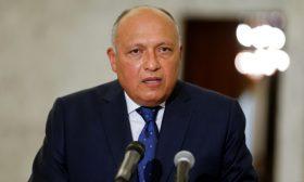 وزير الخارجية المصري يعلّق على الاتصالات الأخيرة مع تركيا ويؤكد على أهمية الحوار- (فيديو)