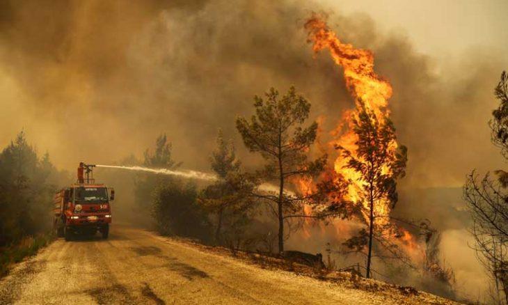 حرائق الغابات في تركيا تفجر جدلاً حول استعدادات الحكومة وضعف اسطول طائرات الإطفاء- (صور)