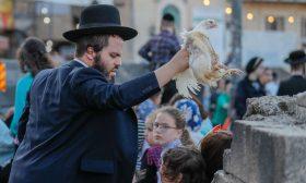 """يهود متشددون يقيمون مراسم دينية احتفالا بعيد """"الغفران""""- (صور)"""