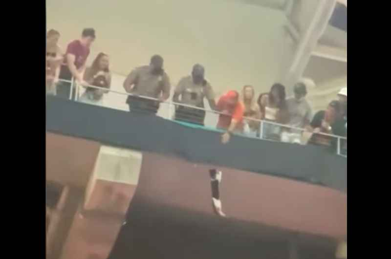 """مشجعون في أمريكا ينقذون """"قطة"""" سقطت من سقف الملعب أثناء مباراة- (شاهد)"""