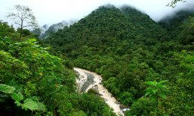 غازات الدفيئة.. تهديد عالمي أخطر من كورونا والحروب الدامية