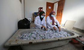 فلسطينيات يعدن تصنيع الورق لاستخدامه في اللوحات الفنية- (صور)